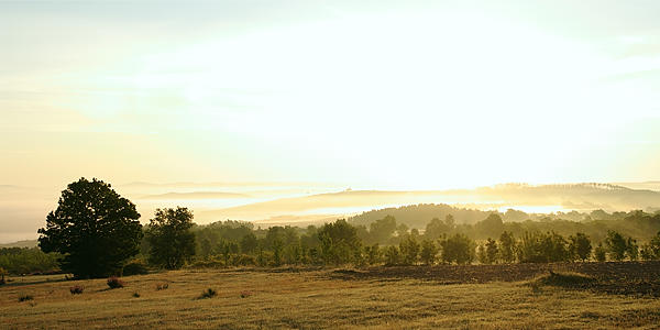 Sonnenaufgang ~ auf den Vordergrund belichtet