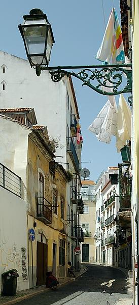 Lisboa mit Taube