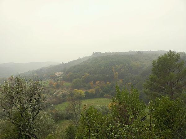 Regen so fein, fast fallender Nebel . . .
