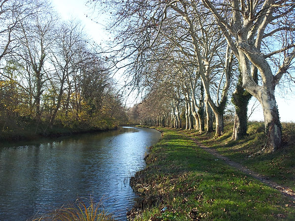 wieder mal Canal du Midi