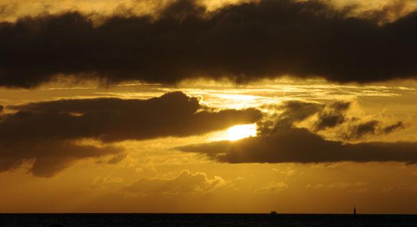 goldener Sonnenaufgang ~ weichgezeichnet durch Kaffeedampf ;)