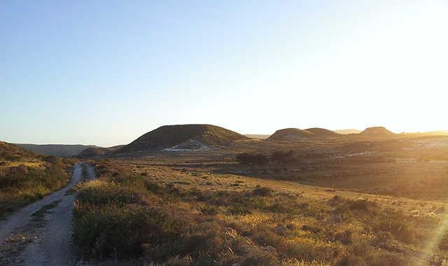andalusische Landschaft im Abendlicht . . .