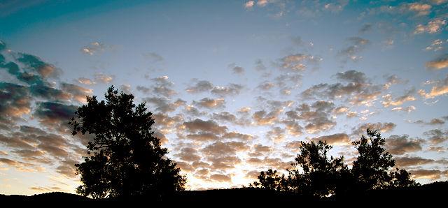 Schäfchenwolken vor Sonnenaufgang