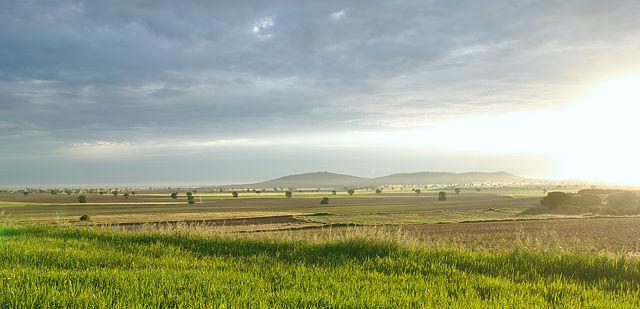 Morgenlicht über der Mancha