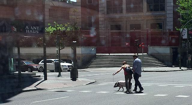 die Sau rauslassen ~ in Madrid