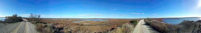 Radtour zwischen Delta und Meer