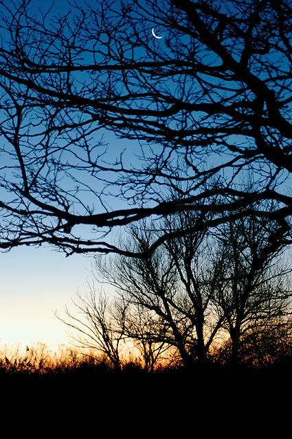Morgenhimmel in der Camargue ~ mit Mondsichel