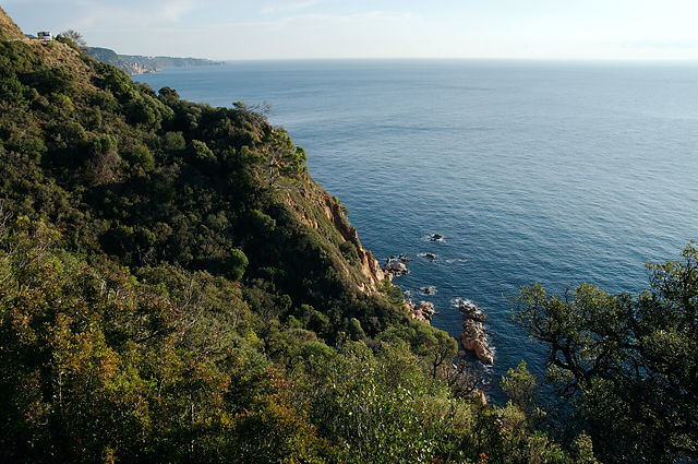 Dasselbe am Morgen ~ links oben der alte Herr, rechts das Mediteranum