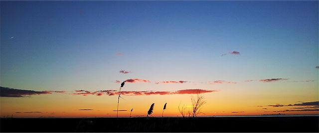 Heute ~ der Morgen vor Sonnenaufgang