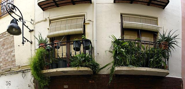 Balkone mit Sonnenschutz und Urwald