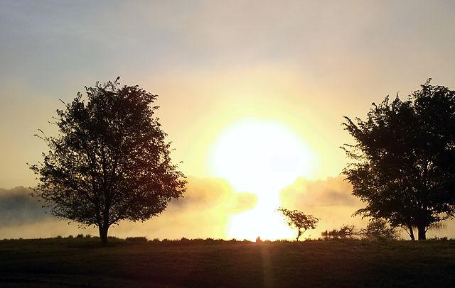 Morgennebel über der Saône II
