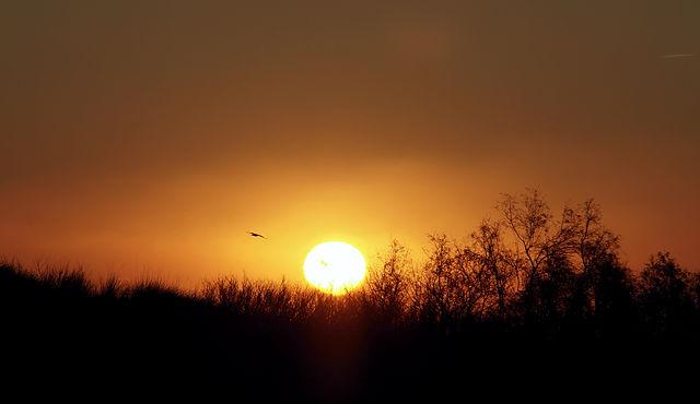 das traditionelle Sonnenaufgangsbild
