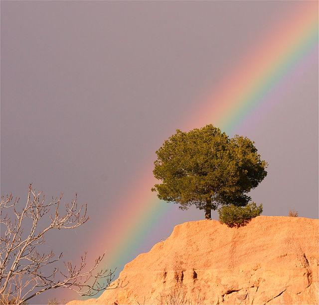 . . . der Anfang des Regenbogens . . .