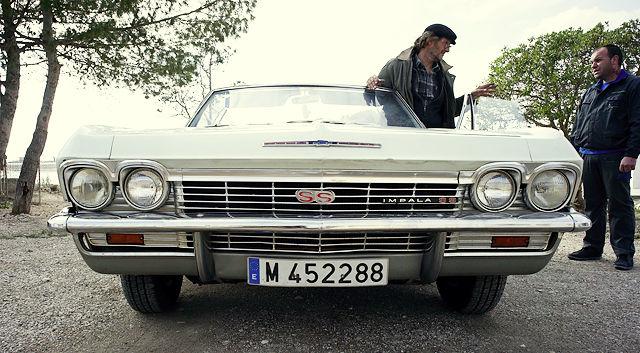 Impala ~ Frontansicht mit Pedro