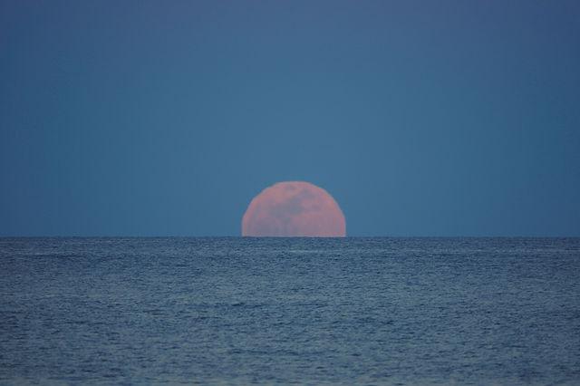 der volle Mond ~ Aufgang I
