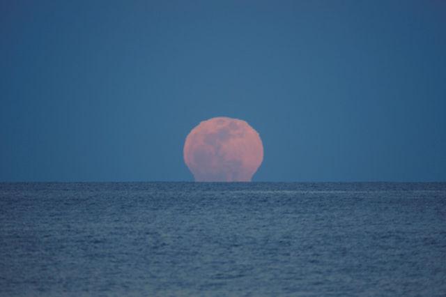 der volle Mond ~ Aufgang II