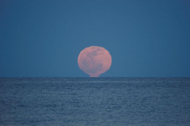 der volle Mond ~ Aufgang IV