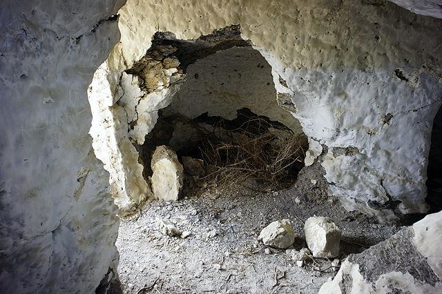 Gästehöhle