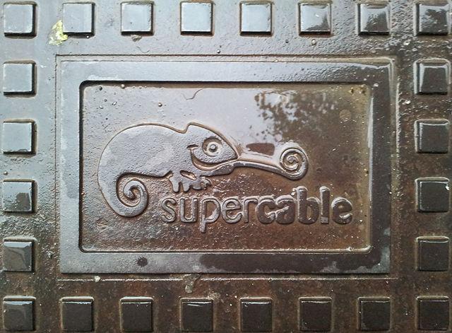 ein naßer Gecko aus Gußeisen ~ Logo der Supercable Andalucia S.A.