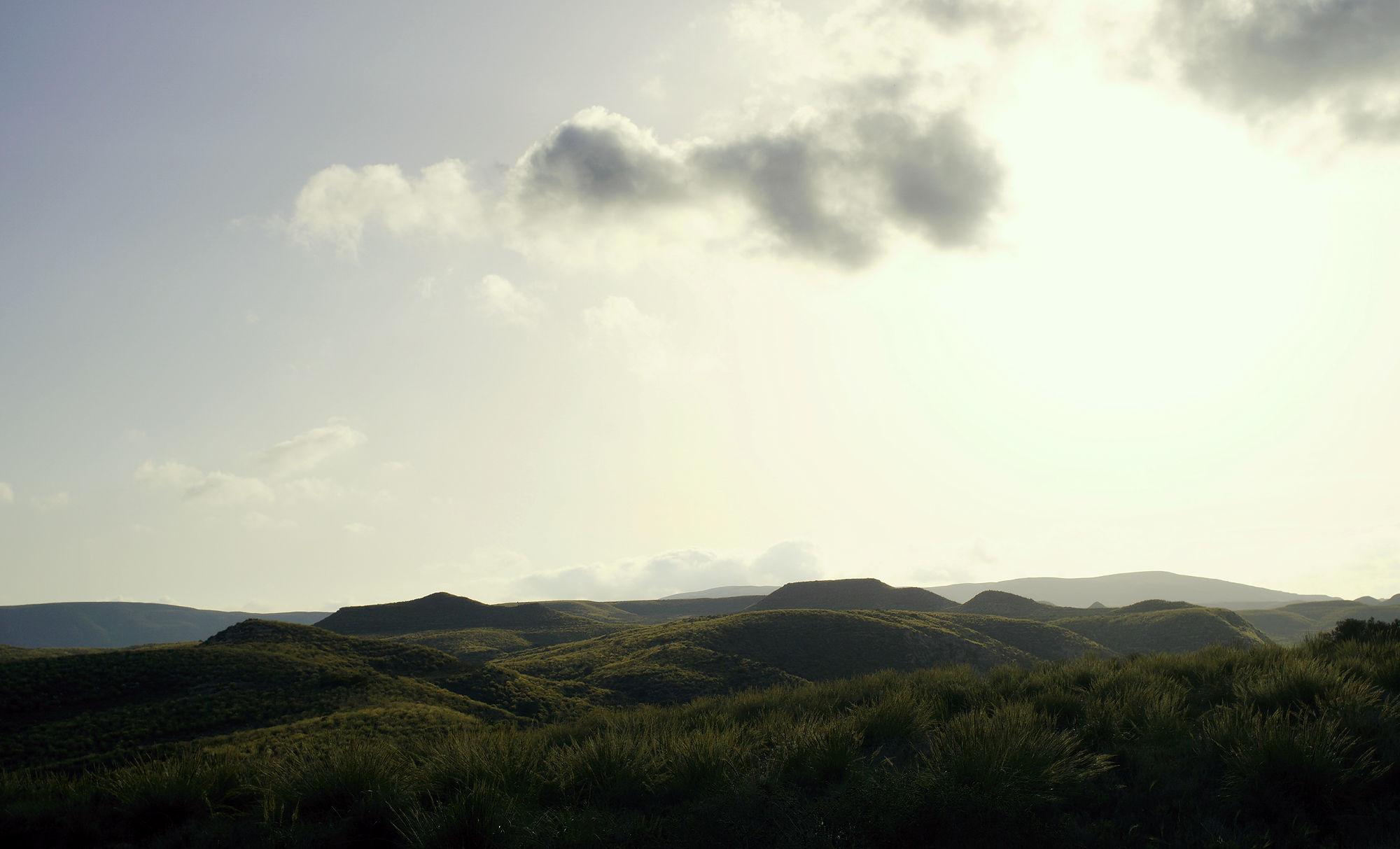 die grünen Hügel um Agua Amarga im Abendlicht