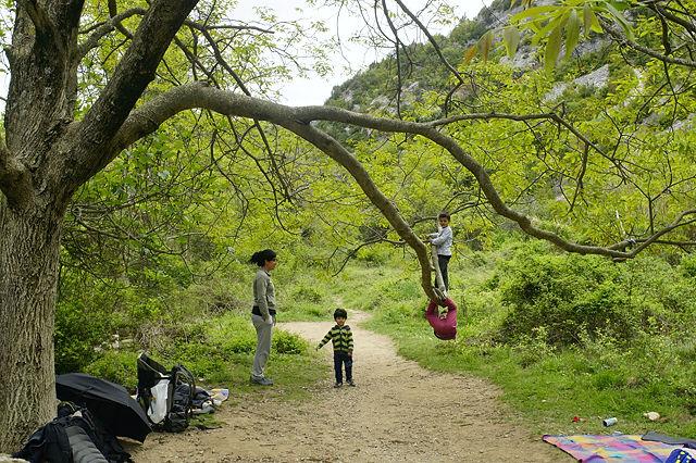 die Kleinen klettern lieber auf Bäume