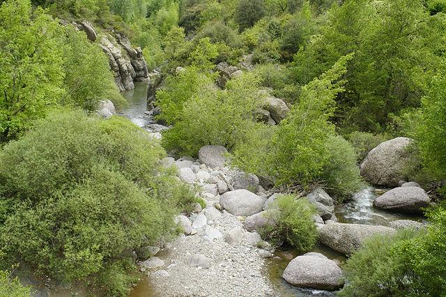 Blick hinunter zum El Flamsell unter der Felswand