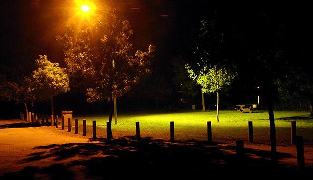 Blick in 'meinen' Park direkt an La Dordogne heute Nacht