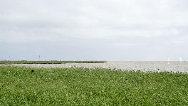 La Gironde, Blick nach links Trichtereinwärts