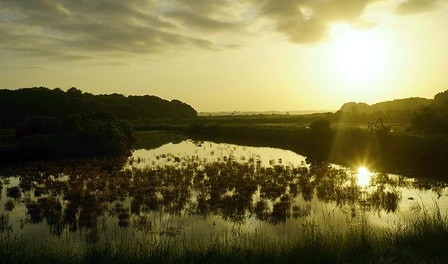 Morgensonne über dem Marais Salante bei Quimiac