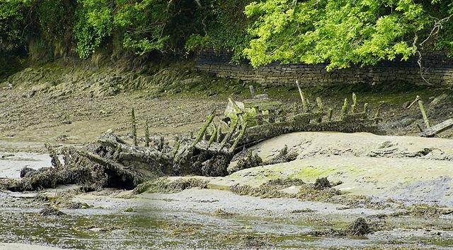 am Rivière de Brigneau ~ fast am Ende des Zerfalls