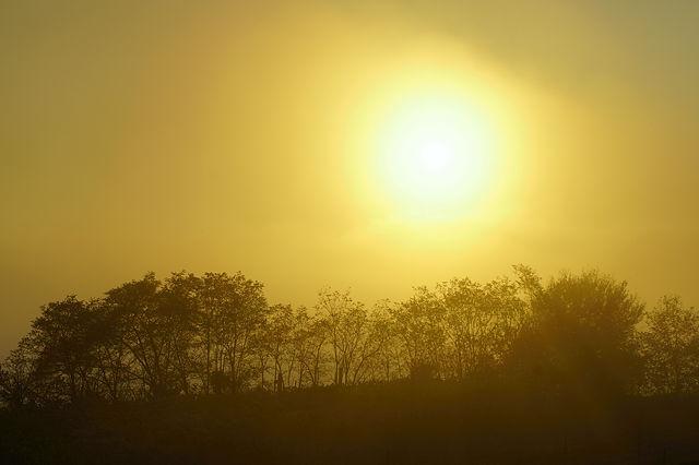 goldener Herbst ~ heimatlicher Sonnenuntergang I