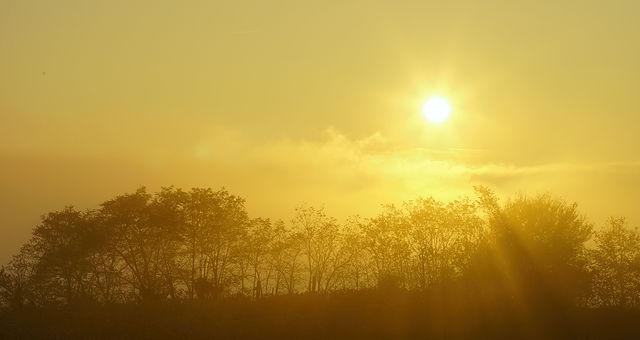 goldener Herbst ~ heimatlicher Sonnenuntergang II