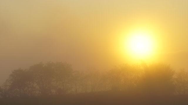 goldener Herbst ~ heimatlicher Sonnenuntergang IV