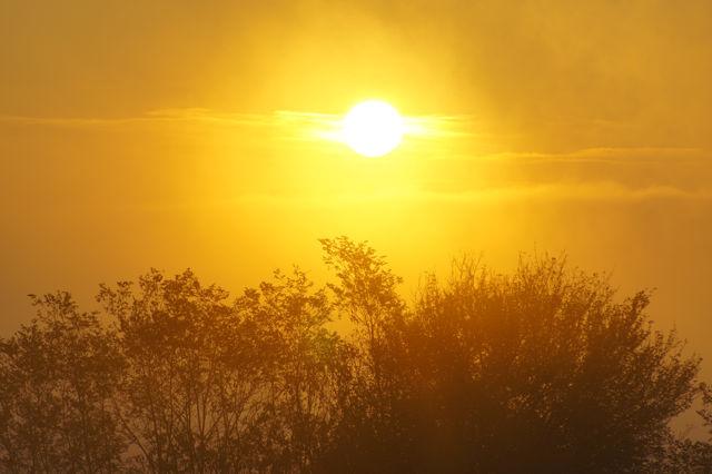 goldener Herbst ~ heimatlicher Sonnenuntergang V