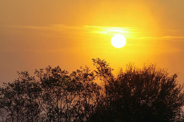 goldener Herbst ~ heimatlicher Sonnenuntergang VI