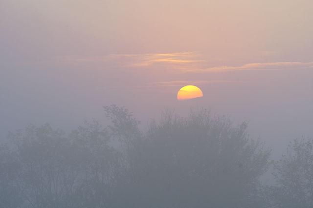 goldener Herbst ~ heimatlicher Sonnenuntergang VIII