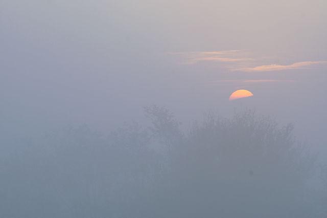 goldener Herbst ~ heimatlicher Sonnenuntergang IX