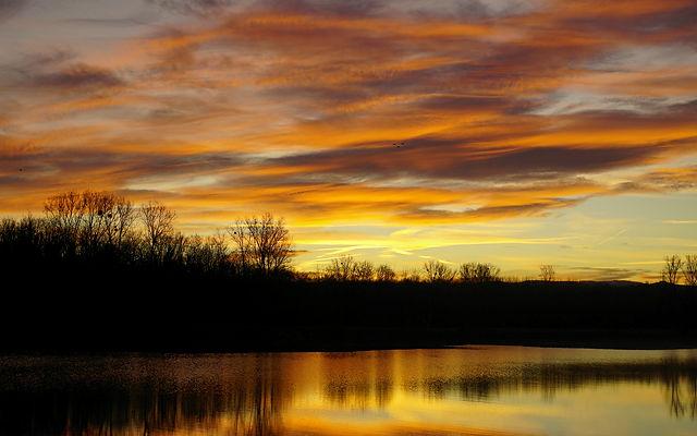 vor Sonnenaufgang am Rhein I
