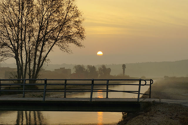 Canal de l'Esquerrra de l'Ebre ~ Morgenstund mit Gold