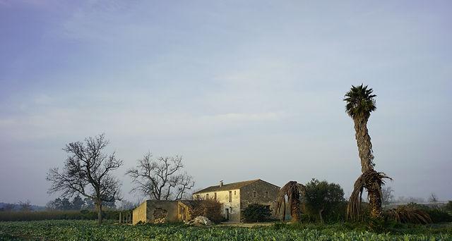 nebenan: nicht mehr bewohnter Bauernhof