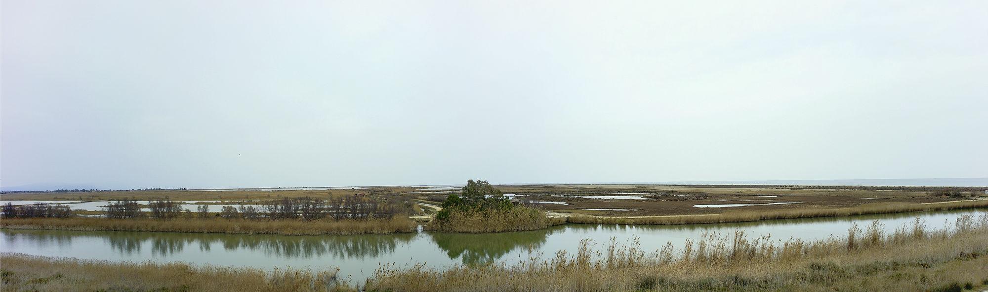 Naturpark Ebro-Delta ~ Blick über den Riu Migjorn auf die Illa de Buda