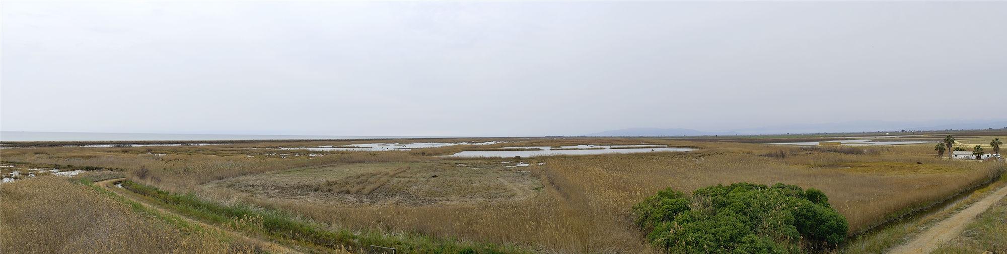 Naturpark Ebro-Delta ~ Blick auf die andere Seite, westliche Richtung