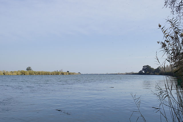 Ebro, Blick stromabwärts in Richtung Mündung