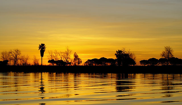Morgen über Ebro II