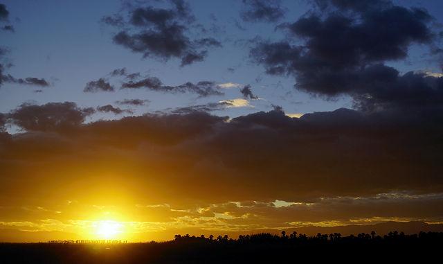 Abend, vorgestern ~ die Sonne geht hinter Palmenhainen unte
