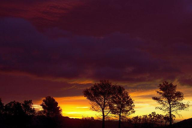 Morgenhimmel auf knapp 1000 Höhenmetern, Serra Calderona