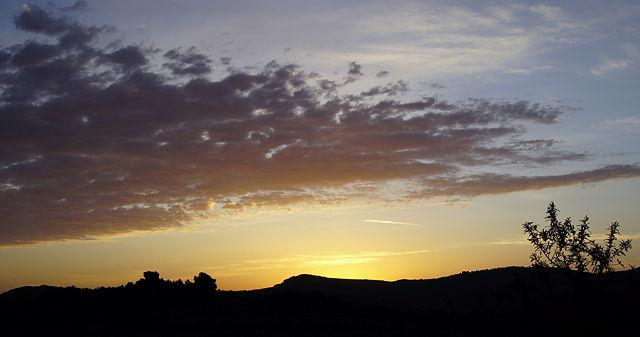 vor dem letzten Sonnenaufgang im März ~ es werde . . .