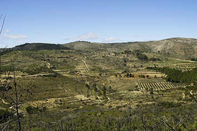 Querfeldein zurück, zielsicher auf den Punkt, aber noch das eine oder andere Tal dazwischen: Suchbild mit Magirus