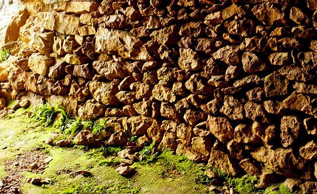 Im Bergwerk ~ Mauer und Farn