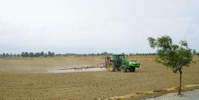 Reisfeld, noch trocken ~ es wird gespritzt